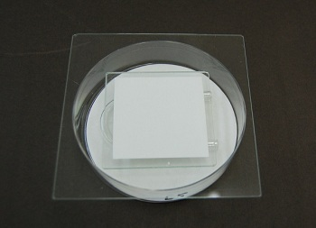 photocatalyst_antibact.1.jpg
